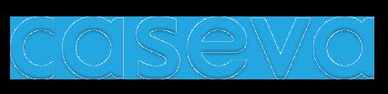 Hakukoneoptimoidut verkkokaupat ja kotisivut – Caseva Oy Joensuu
