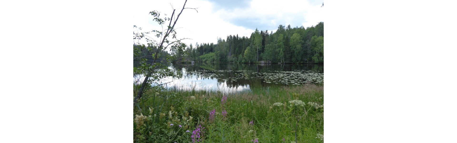 Hiking along Hiitolanjoki River