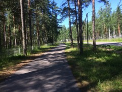 Iron Curtain Trail (6 days/ 210 km)