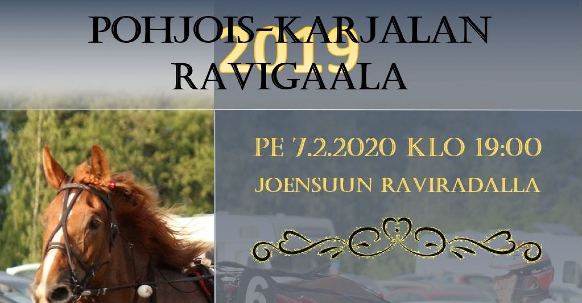 Pohjois-Karjalan Ravigaala 2019