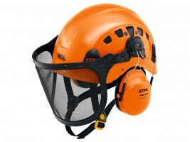 Head, face and ear protection